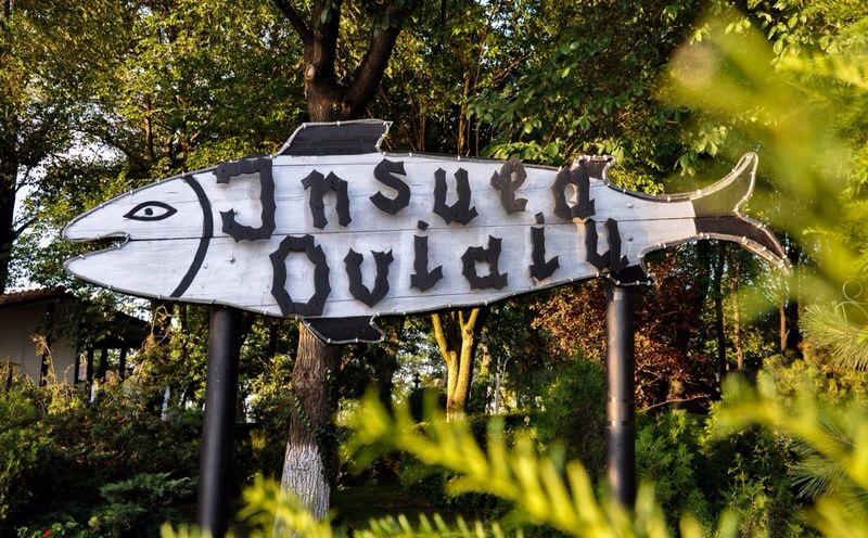 Insula-Ovidiu2