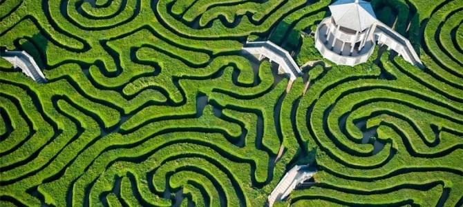 Labirintul din gard viu Longleat: cel mai lung din lume