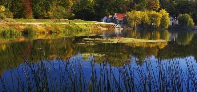 ARAD: Parcul Natural Lunca Mureşului