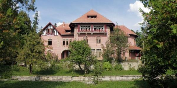BACĂU: Palatele băcăuane