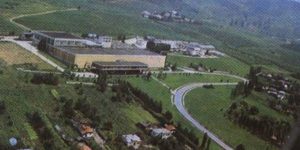 Tezaurul genetic al viticulturii româneşti este păstrat la Ştefăneşti
