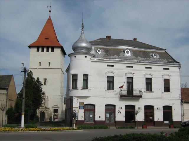 biblioteca-oraseneasca-teodor-nes