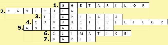 Campionatul Naţional de Rebus Logic va avea loc on-line