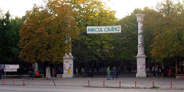 BUZĂU: Parcul Crâng, ultima rămăşiţă din celebrul Codru al Vlăsiei