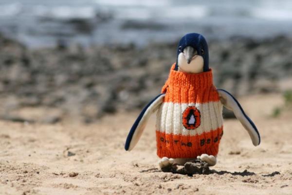 pinguini3