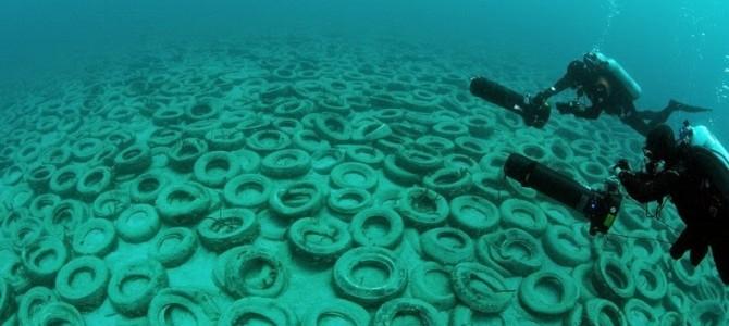 Încercare eşuată de a crea un recif artificial din cauciucuri uzate