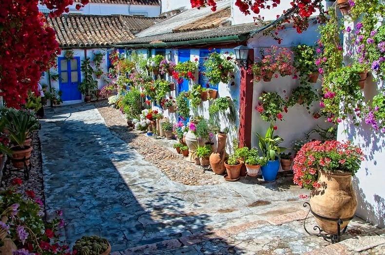 Festivalul-florilor-Cordoba-06