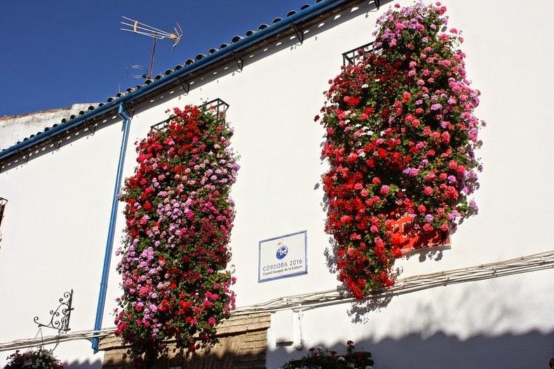 Festivalul-florilor-Cordoba-09