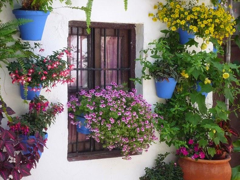 Festivalul-florilor-Cordoba-12