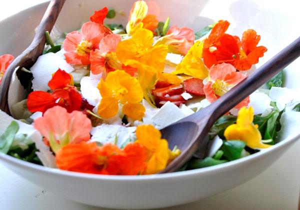 flori-comestibile