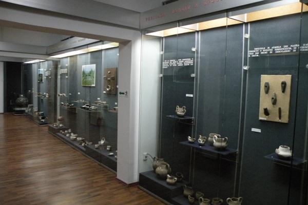 Muzeul Teohari Antonescu-04