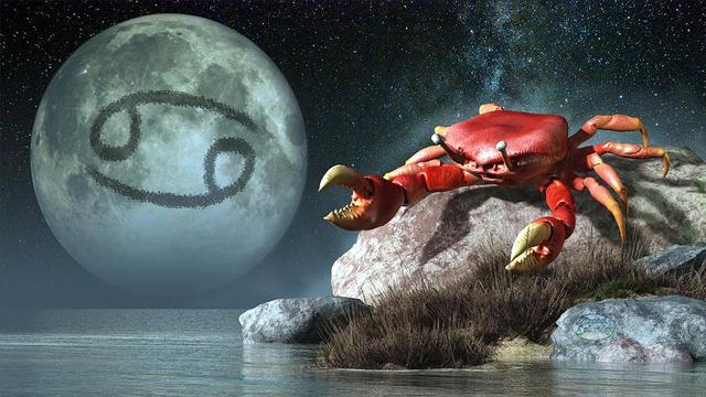 zodia-rac