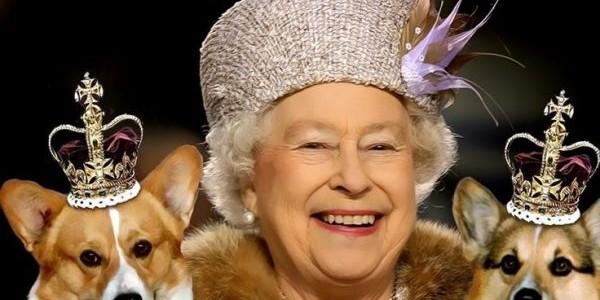 Câinii Reginei Elisabeta a II-a mănâncă în ordinea vârstei