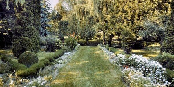 Grădină botanică într-o comună băcăuană