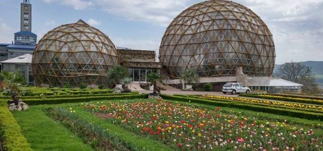 """""""Simfonia"""" lalelelor la Grădina Botanică Jibou"""