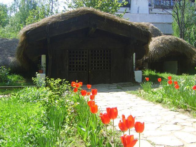 Muzeul-satului-04