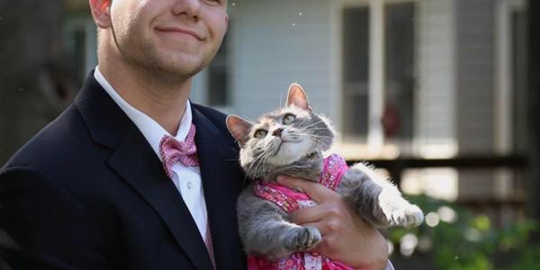 Pisica Ruby, partenera unui american la balul de absolvire