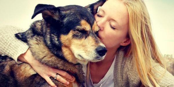 Bătăile inimii câinilor sunt sincronizate cu cele ale stăpânilor