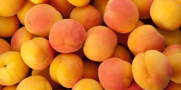 Pesticide peste limita admisă la caise şi nectarine provenite din Turcia