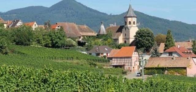 Regiunea viticolă Alsacia