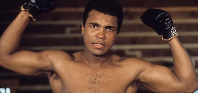 Un an fără Muhammad Ali, Regele Boxului Mondial