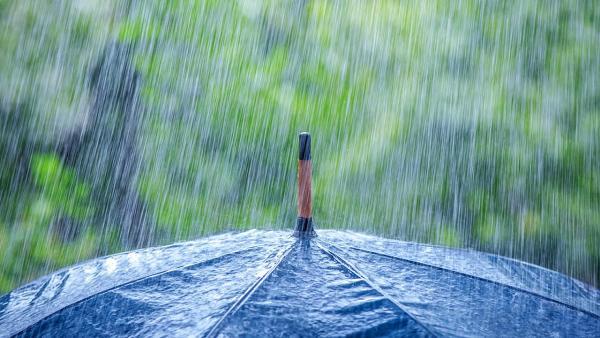 plaoie-umbrela