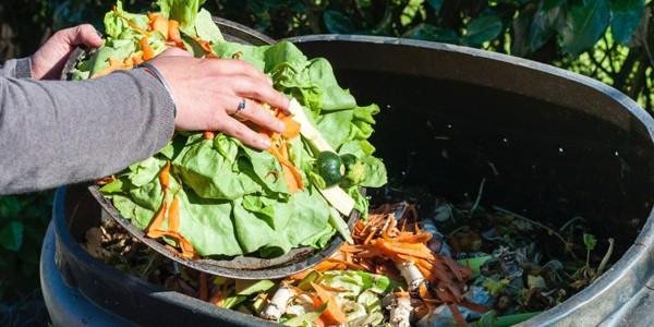 Cea mai mare parte din risipa alimentelor are loc la domiciliu
