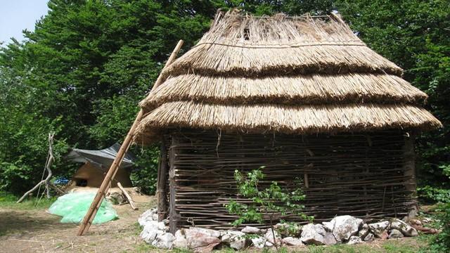 Sectorul-neolitic-Tecsesti-04