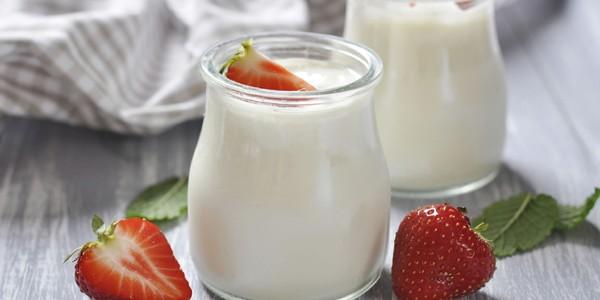 Dieta probiotică