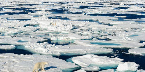 Anul viitor sau peste doi ani, tărâmul arctic va rămâne fără gheaţă