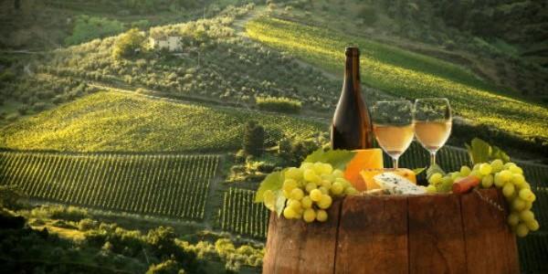 Italia, tărâmul vinurilor