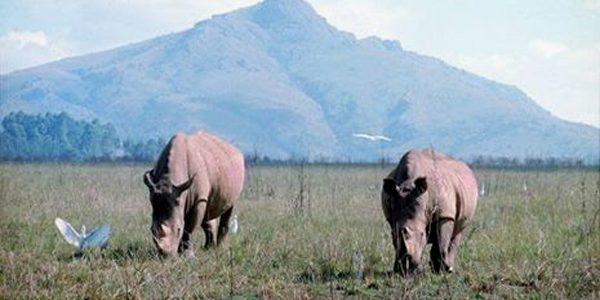 Regatul Swaziland: natură, turism şi gastronomie
