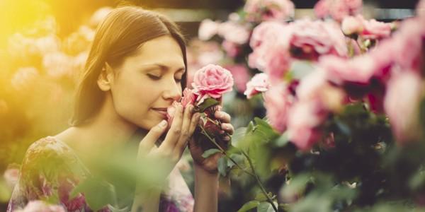 frumusete-flori