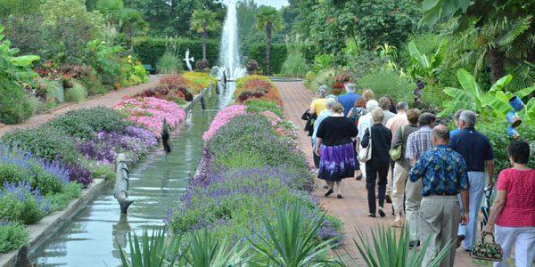 Cum ne comportăm la grădina botanică