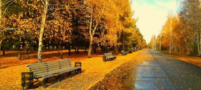 Cum va fi vremea în octombrie – decembrie 2016