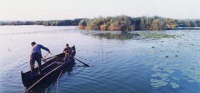 """Un heleşteu amenajat """"la malul Dunării"""" a secat după o lună"""