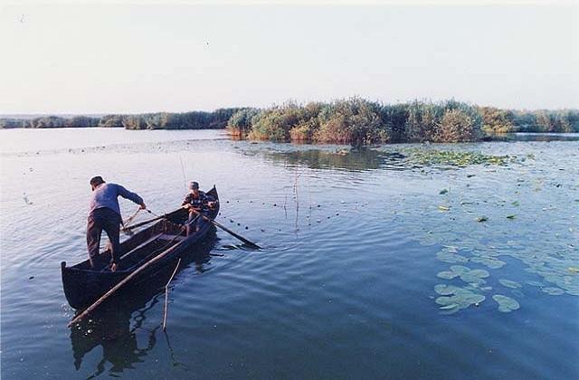 pescuit-Delta