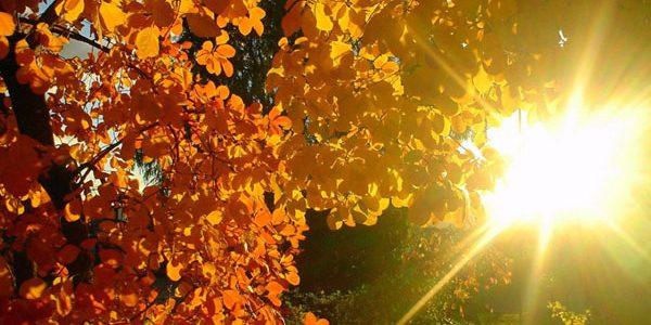 Temperaturi de primăvară până la sfârşitul săptămânii; ploile revin după 2 octombrie