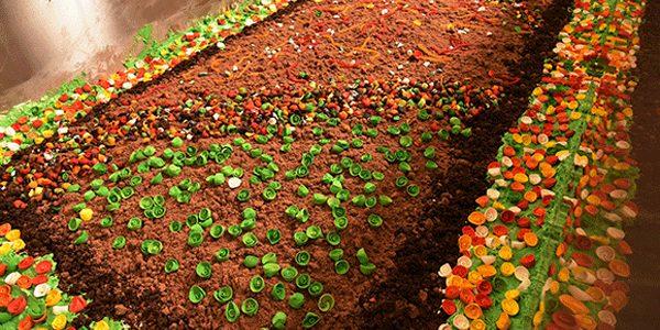 """Cel mai mare tort din """"resturi"""" din lume"""