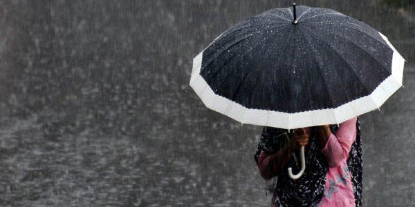 Vin ploi, ninsori şi intensificări ale vântului
