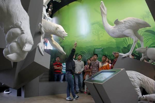 muzeu-biodiversitate-panama-03