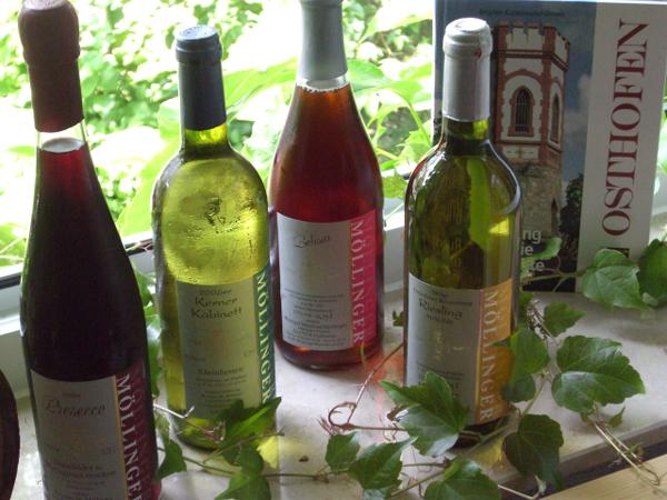rheinhessen-vinuri