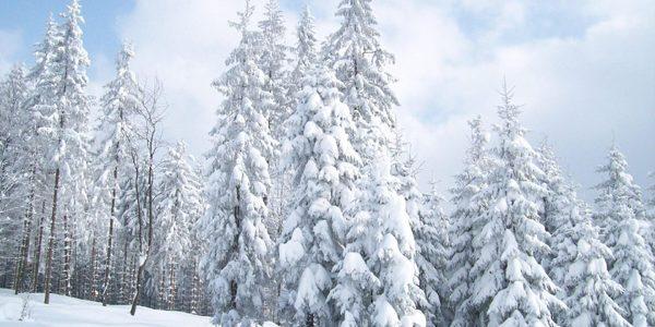 Cod galben de vânt puternic, ninsoare şi polei