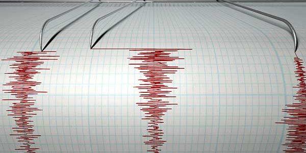 A fost un cutremur tipic din zona Vrancea, nu avem motive să ne speriem
