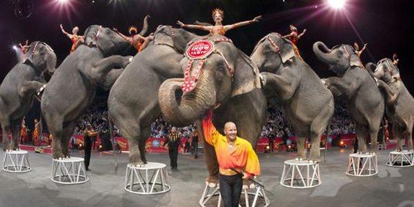 Celebrul circ Barnum se închide