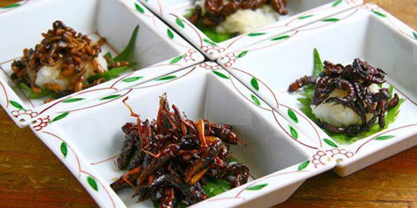 Japonezii sărbătoresc Valentine's Day cu dulciuri realizate din insecte
