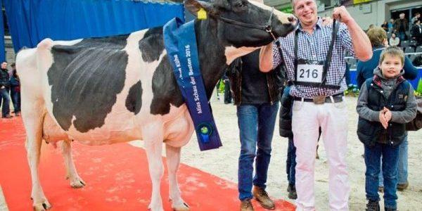"""""""Super-vaca"""" Madame, câştigătoare a unui concurs de frumuseţe"""