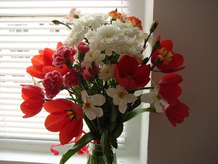 Flori 226