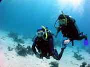 O invenţie pe zi: Echipamentul de scufundat
