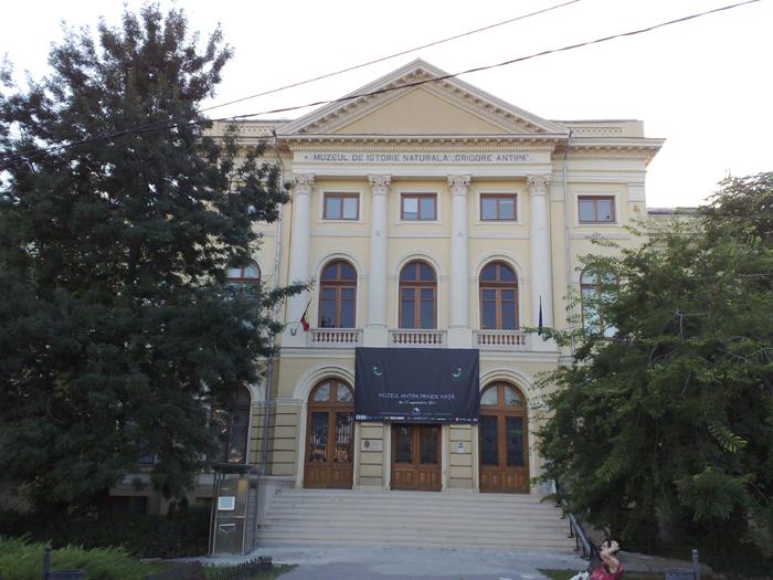 Muzeul-Grigore_Antipa